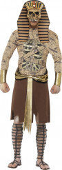 Déguisement pharaon zombie adulte Halloween