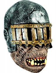 Masque intégral guerrier adulte
