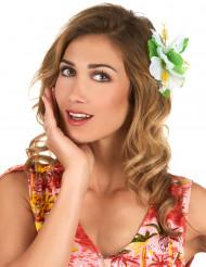 Barrette fleur blanche Hawaï