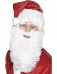 Barbe blanche 28 cm adulte Noël