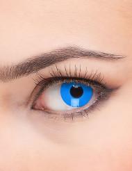 Lentilles de contact oeil bleu