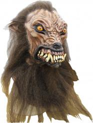 Masque intégral chien chasseur de loup-garou