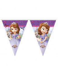 Guirlande Fanions Princesse Sofia ™