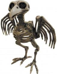 Squelette de corbeau Halloween