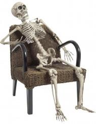 Squelette à poser 160 cm Halloween