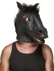 Masque latex tête de cheval noir adulte