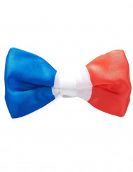 Noeud papillon tricolore France