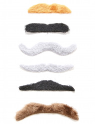 Lot 6 moustaches adhésives adulte