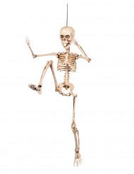 Décoration articulée squelette 50 cm Halloween