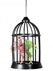 Décoration lumineuse et sonore squelette corbeau en cage