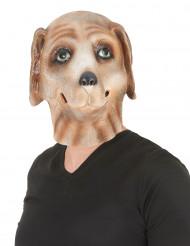 Masque chien latex adulte