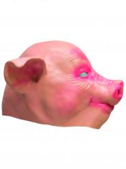Masque cochon latex adulte