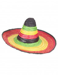 Sombrero Mexicain multicolore bordure et pointe noire adulte