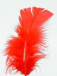 100 plumettes rouges