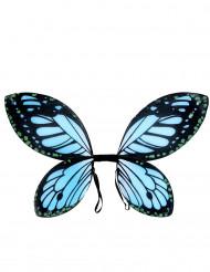 Ailes papillon noires et bleue fille