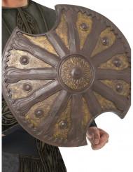Bouclier bronze 50 cm