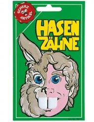 Dents de lapin blanches