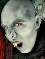 Kit oreilles vampire
