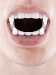 Dentier de vampire blanc