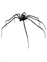 Araignée noire 110 cm Halloween