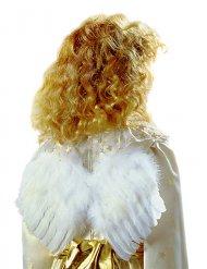 Ailes d'ange en plumes blanc