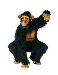 Déguisement de chimpanzé costume singe