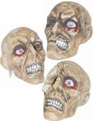Décoration crâne momifié 18 x 11 x 19 cm