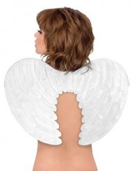 Angel Wings white 60x25cm