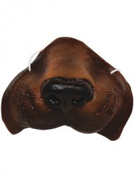 Nez de chien marron