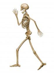 Décoration squelette marchant d