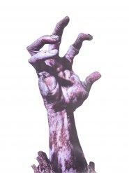 Décoration fenêtre main zombie Halloween