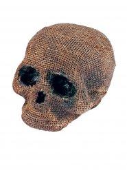 Décoration Halloween crâne sans mâchoires gris-beige 11x16x18cm