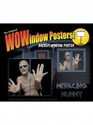 Autocollant fenêtre momie 2 pc 91 x 152 cm