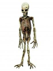 Décoration squelette de singe Halloween