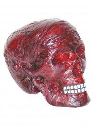 Crâne rouge décoratif