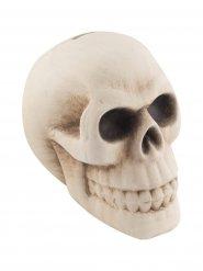 Tirelire décorative crâne Halloween