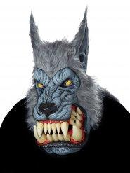 Masque loup garou adulte gris