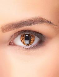Lentilles fantaisie léopard adulte