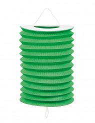 12 Lampions verts 20 cm