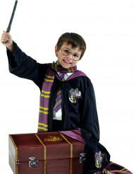 Déguisement et coffre Harry Potter™ enfant