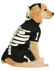 Déguisement pour chien squelette phosphorescent