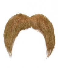 Moustache blonde grisonnante adulte