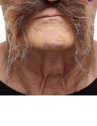 Moustache châtain grisonnante adulte