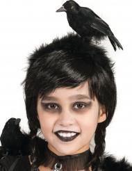 Serre-tête corbeau adulte et enfant