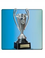 Trophée argenté 24 cm
