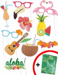 Kit photobooth Hawaï 10 pièces