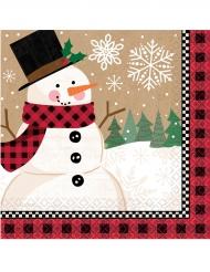 16 Petites serviettes en papier Bonhomme de neige 25 x 25 cm