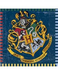 16 Serviettes en papier Harry Potter ™ 33 x 33 cm