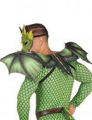 Ailes dragon 94 X 36 cm