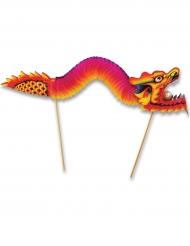 Pics dragon 24 x 66 cm